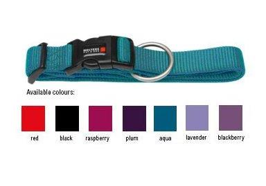 Wolters Nylon Snap Buckle Dog Collar including Engraved Indigo Collar Tag